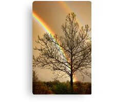 Front Yard Rainbow Canvas Print