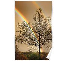 Front Yard Rainbow Poster