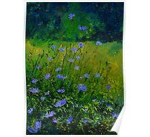 wild flowers 901 Poster