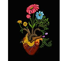 Harvest Peace, Grow Love - Bee Here Now Photographic Print