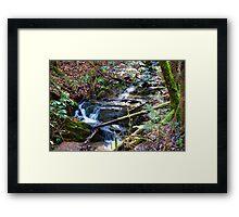 Sun Dappled Mountain Rivulet Framed Print