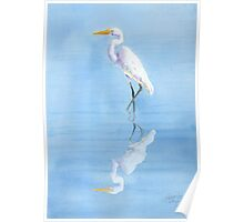 Great Egret In Reflection Poster