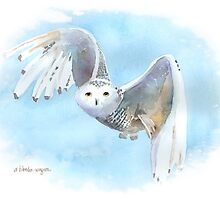 Snowy Owl In Flight by arline wagner