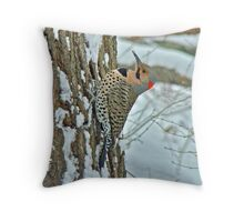 Northern Yellow Shafted Flicker - Colaptes auratus Throw Pillow