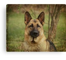 Yahtzee--German Shepherd Canvas Print