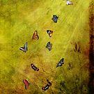Dancing Butterflies by Lois  Bryan
