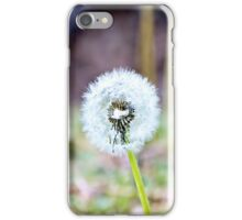 Dandelion - iPhone and iPod skin iPhone Case/Skin
