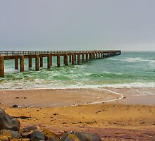 Jetty on Skeleton coast by Rudi Venter