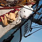 The Figurehead of the Dutch Tall Ship Europa by Gerda Grice