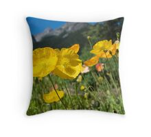 FairmontGarden Throw Pillow