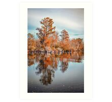 Autumn Foliage Landscape Art Print