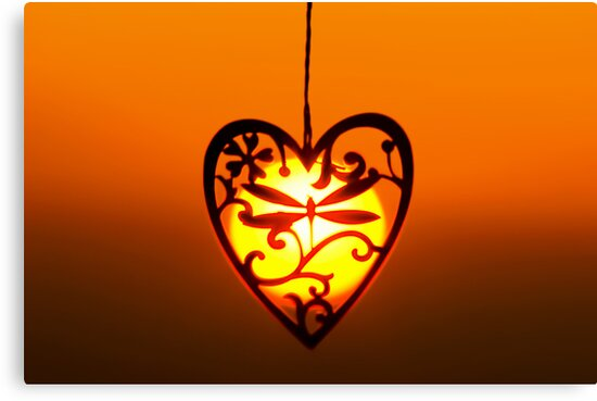 Love the Sun by David Alexander Elder