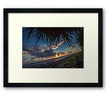 Pandanus Horizon Framed Print