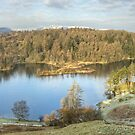 Tarn Hows, A Different Day by VoluntaryRanger
