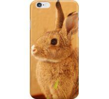 potted bun iPhone Case/Skin