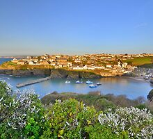 Cornwall: Evening, Overlooking Port Isaac by Rob Parsons
