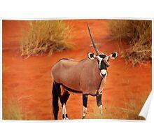 Oryx or Unicorn? Poster