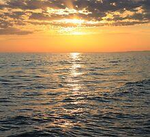 Lake Michigan Sunset by Joy Fitzhorn