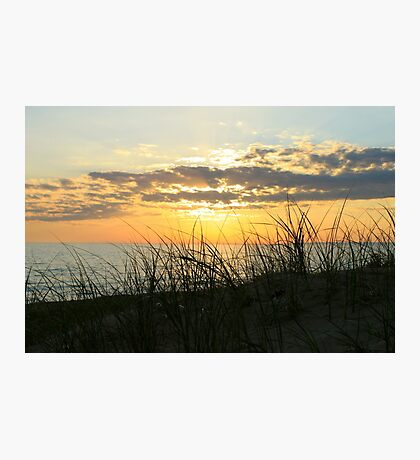 Dune Grass at Sunset Photographic Print