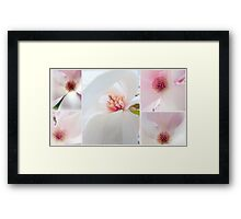 Pretty in Pink... Framed Print