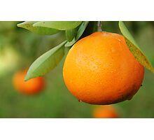 Tangerine Photographic Print