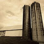 Double Silos by reindeer