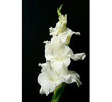 White Ruffles Photographic Print