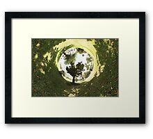 Wide View Framed Print