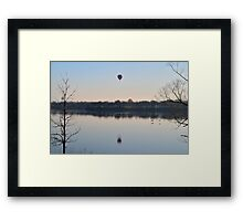Floaters and Flyers Framed Print