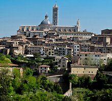 walled Siena by Anne Scantlebury