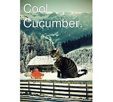 Cool Cucumber Photographic Print
