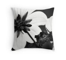 Black and White Dahlias Throw Pillow