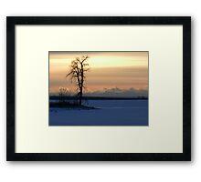 Frozen Silhouette Framed Print