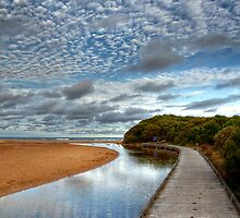 The Boardwalk to Rocky Point by Christine Smith