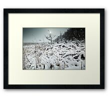 My Dreams Are Frozen Until I Can Share Them With You. Framed Print