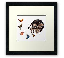 Sleeping Cat with Butterflies Framed Print