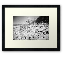 My Dreams Are Frozen Until I Can Share Them With You. BW Framed Print