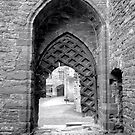Gateway to the castle by Victoria Kidgell