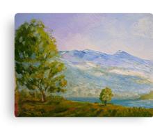 River Tamar Canvas Print