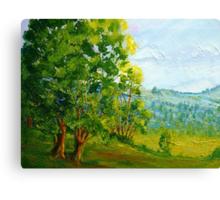 Porpunkah Gums Canvas Print
