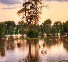 Solitary , Junee, NSW Australia - The HDR Experience by Philip Johnson