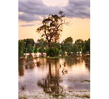 Solitary , Junee, NSW Australia - The HDR Experience Photographic Print