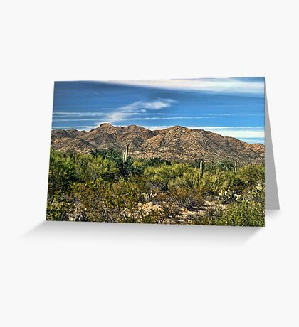 The Beautiful Arizona Desert Greeting Card
