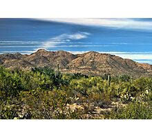 The Beautiful Arizona Desert Photographic Print