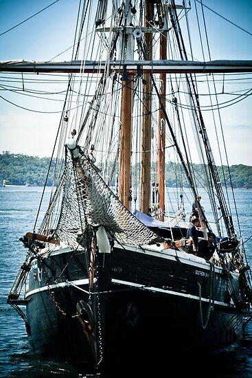 Hoist the Mainsail! by Deborah Clearwater
