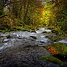 In All Its Glory ~ Lake Creek ~ by Charles & Patricia   Harkins ~ Picture Oregon