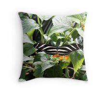 Zebra Longwing Butterfly on Flower Throw Pillow