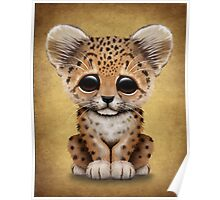 Cute Baby Leopard Cub  Poster
