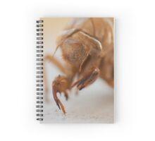 Creeper Spiral Notebook