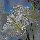 White Lily in Pastels by peterrobinsonjr